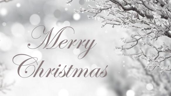 winter-tree-christmas-snowy-time-snow-holidays-xmas-merry-splendor-magic-bokeh-wallpaper-hd-1920x1080-1366x7682